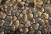 The soil in the fissures — Stock Photo