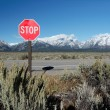 Royalty-Free Stock Photo: Traffic Sign Stop with mountains at Grand Teton National Park,