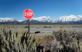 """Traffic Sign """"Stop"""" with mountains at Grand Teton National Park, — Stock Photo"""