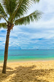 Sand beach with palm in Phu Quoc close to Duong Dong, Vietnam — Stock Photo