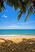 Sand beach with palms and canoes in Phu Quoc close to Duong Dong, Vietnam — Stock Photo