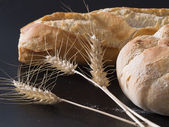 Bread and corns 2 — Stock fotografie