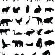 Wild animals — Vector de stock #5184673