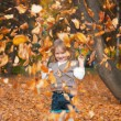 Girl is playing with autumn leaves — Stock Photo