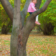 Girl is sitting on a tree — ストック写真