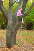 Girl is sitting on a tree — Stock Photo