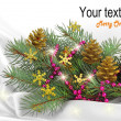 Christmas holiday — Stock Photo #4278103