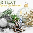 Christmas holiday — Stock Photo #4287825
