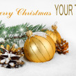 Christmas holiday — Stock Photo #4288068