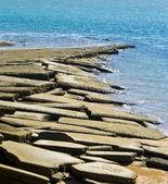 Susan Hoi Shell Fossil Beach Cemetery — Stock Photo