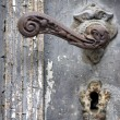 Doorhandle with a duckhead - Stockfoto