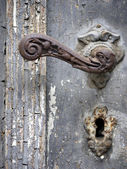 Doorhandle with a duckhead — Stock Photo