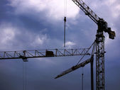 Cranes and rain clouds — Stock Photo