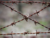 Crossed barbed wire — Stock Photo