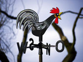 Weathercock and branches — Stock Photo