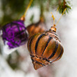 Christmas baubles on a snowy pine — Stock Photo