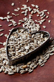 Sunflower seeds — Stockfoto
