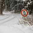 Snow Chaos in the Winter — Stockfoto