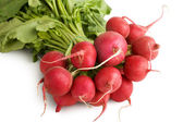 Fresh Radishes — Stock Photo
