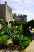 Garden at the walls of an ancient fortress. Dubrovnik, Croatia — Stockfoto