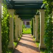 Shady colonnade - Stock Photo