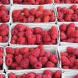 Boxed Raspberries — Stock Photo