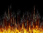 Fire & Smoke — Stock Photo