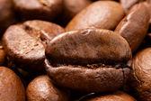 コーヒー豆のクローズ アップ — ストック写真