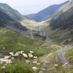 Transfagarasan - road on a high mountain — Stock Photo