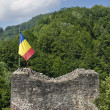 Poenari Fortress, Vlad Tepes fort in Romania - Stock Photo