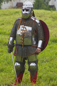 Knight in shining armor on a green background — Stock Photo