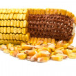 Stock Photo: Corn and grains