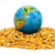 Stock Photo: Globe and corn