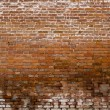 Royalty-Free Stock Photo: Wet brick wall