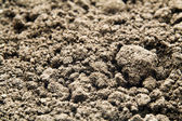 Shallow soil — Stock Photo