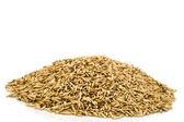 Heap oats — Stock Photo