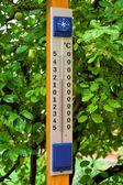 Large termomert — Stock Photo
