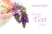 Arrangement of wild flowers on a white background — Stock Photo