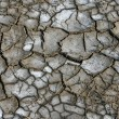 Texture of dried cracked surface layer of the earth — Stock Photo