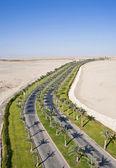 Road through a desert — Stock Photo