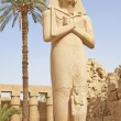 Statue in temple of Ramses 3rd at Karnak — Foto de Stock