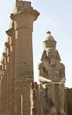 Statue of Ranses II at Luxor Temple — Stock Photo