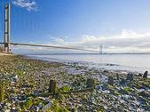 Large suspension bridge over a river — Stock Photo