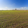Landscape view of farmland — Stock Photo