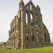 Ancient Abbey ruins — Foto Stock