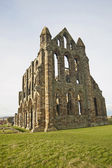 Ancient Abbey ruins — Stock Photo
