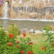 Water feature and bush in a landscaped garden — Stockfoto