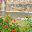 Water feature and bush in landscaped garden — Stock Photo #5274886