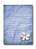 Blue grunge letter paper on white — Stock Photo