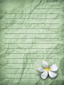 Green grunge letter paper — Stock Photo